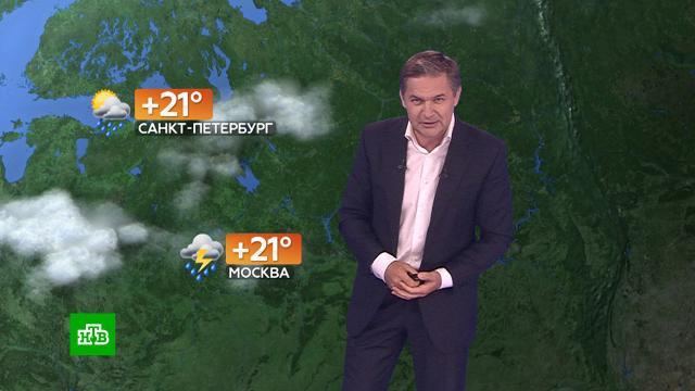 Прогноз погоды на 5августа.погода, прогноз погоды.НТВ.Ru: новости, видео, программы телеканала НТВ