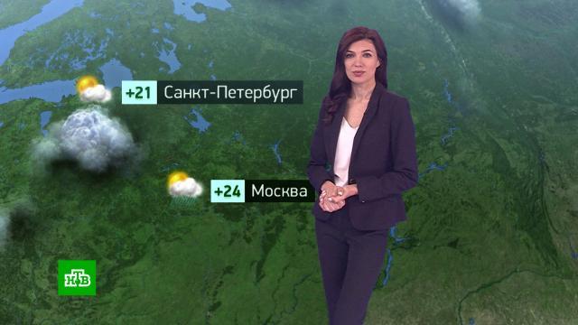 Утренний прогноз погоды на 5августа.погода, прогноз погоды.НТВ.Ru: новости, видео, программы телеканала НТВ