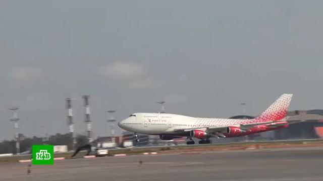 Первый за шесть лет самолет из РФ приземлился вШарм-эш-Шейхе.Египет, туризм и путешествия.НТВ.Ru: новости, видео, программы телеканала НТВ