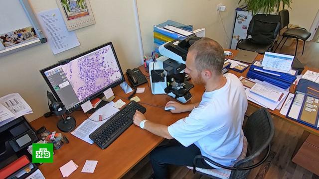 Нейросеть помогает петербургским онкологам ставить диагнозы.медицина, наука и открытия, онкологические заболевания, технологии.НТВ.Ru: новости, видео, программы телеканала НТВ