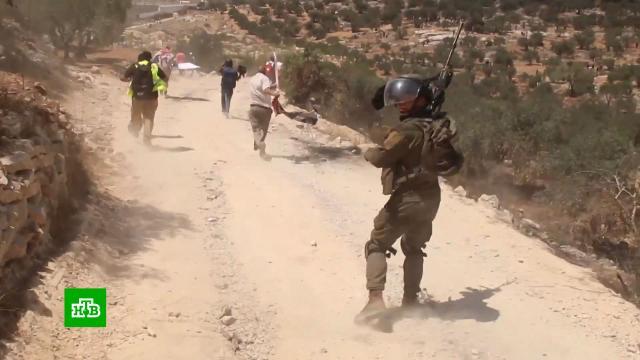 На Западном берегу Иордана произошли новые столкновения.Израиль, Палестина, войны и вооруженные конфликты.НТВ.Ru: новости, видео, программы телеканала НТВ