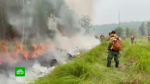 Пожары в Якутии: дым мешает использовать авиацию.Якутия, пожары.НТВ.Ru: новости, видео, программы телеканала НТВ