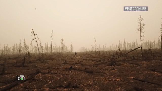 Природный апокалипсис: ученые ждут катастрофических изменений.Якутия, климат, лесные пожары, наводнения, погодные аномалии.НТВ.Ru: новости, видео, программы телеканала НТВ