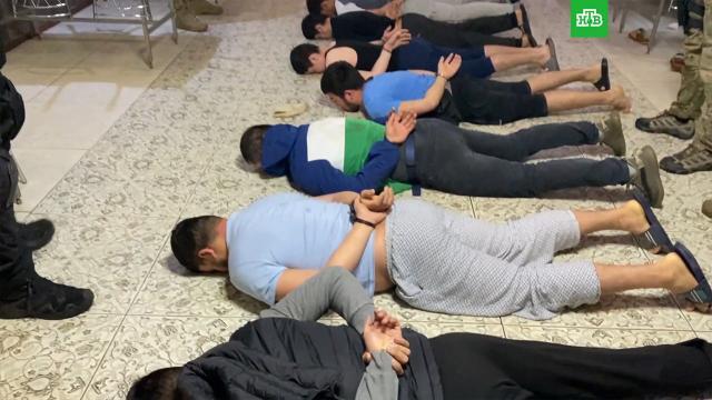 ФСБ задержала 31террориста из «Катиба Таухид валь-Джихад».ФСБ, задержание, терроризм.НТВ.Ru: новости, видео, программы телеканала НТВ