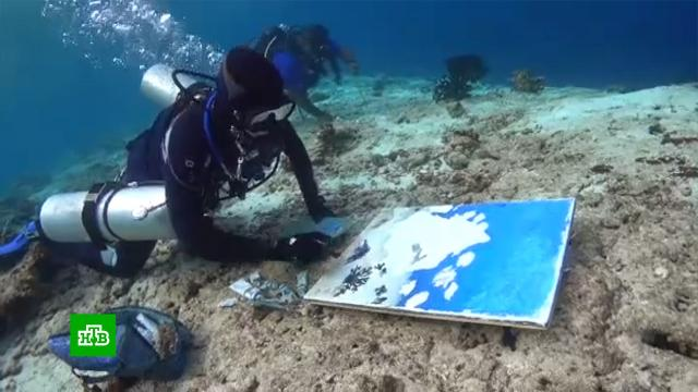 Художественные рекорды: как и зачем пишут картины под водой