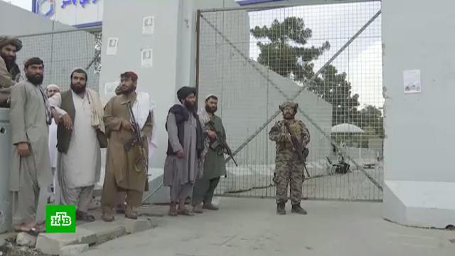 Брошенные вКабуле американцами неисправные вертолеты расстроили талибов.Афганистан, США, Талибан, вертолеты, войны и вооруженные конфликты, самолеты, терроризм.НТВ.Ru: новости, видео, программы телеканала НТВ