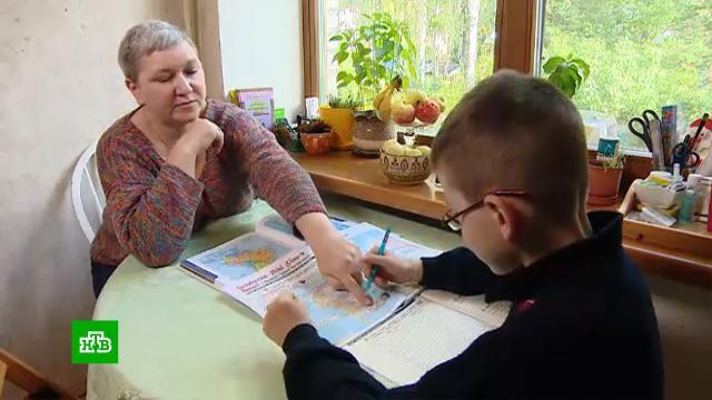 Семейное образование вРоссии становится все популярнее.дети и подростки, образование, школы.НТВ.Ru: новости, видео, программы телеканала НТВ