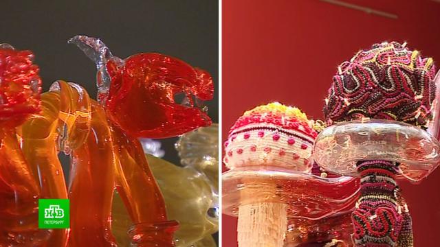 В Эрмитаж привезли стеклянное искусство от современных звездных художников.Санкт-Петербург, Эрмитаж, выставки и музеи, искусство.НТВ.Ru: новости, видео, программы телеканала НТВ