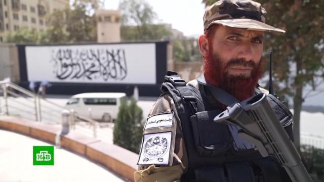 Глава миссии ООН предупредила об угрозе голода вАфганистане.Афганистан, ООН, Талибан.НТВ.Ru: новости, видео, программы телеканала НТВ