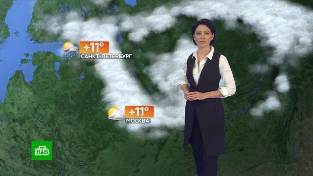Прогноз погоды на 15сентября.погода, прогноз погоды.НТВ.Ru: новости, видео, программы телеканала НТВ