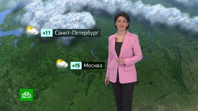 Утренний прогноз погоды на 14сентября.погода, прогноз погоды.НТВ.Ru: новости, видео, программы телеканала НТВ