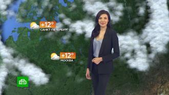 Прогноз погоды на 17сентября.НТВ.Ru: новости, видео, программы телеканала НТВ
