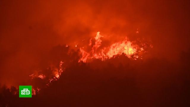 Пожар может уничтожить заповедник «Секвойя» вКалифорнии.США, лесные пожары, стихийные бедствия.НТВ.Ru: новости, видео, программы телеканала НТВ