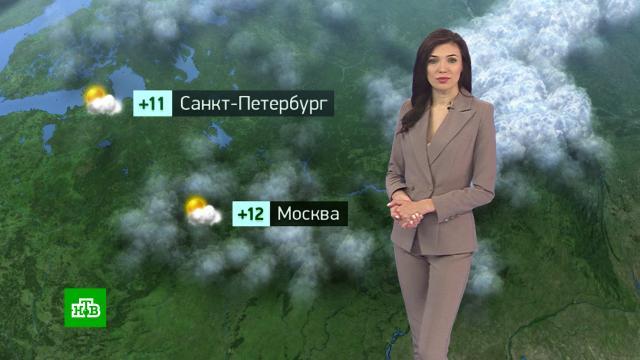 Утренний прогноз погоды на 16 сентября..погода, прогноз погоды.НТВ.Ru: новости, видео, программы телеканала НТВ