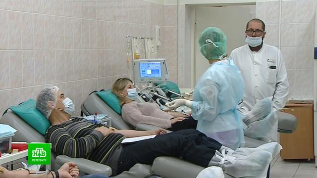 Спасти жизнь легко: как петербургские волонтеры привлекают горожан в доноры костного мозга.Санкт-Петербург, благотворительность, болезни, донорство, онкологические заболевания.НТВ.Ru: новости, видео, программы телеканала НТВ