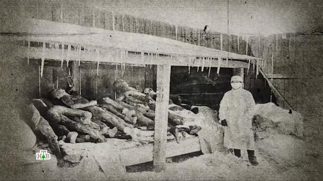 Как бывшие советские республики превращаются в полигоны для экспериментов Пентагона.Грузия, Пентагон, США.НТВ.Ru: новости, видео, программы телеканала НТВ