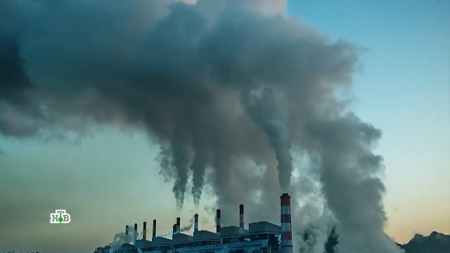 Газ — новый биткоин: энергетические рынки Европы охватила паника.Европа, Европейский союз, Северный поток, газ, экология, энергетика.НТВ.Ru: новости, видео, программы телеканала НТВ
