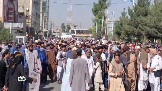 Афганская коллизия: появятся ли террористы на Генассамблее ООН.НТВ.Ru: новости, видео, программы телеканала НТВ