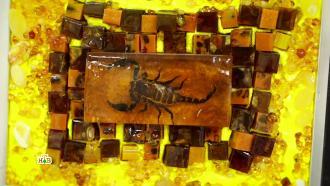 Целительная сила янтаря: какие тайны скрывает солнечный камень