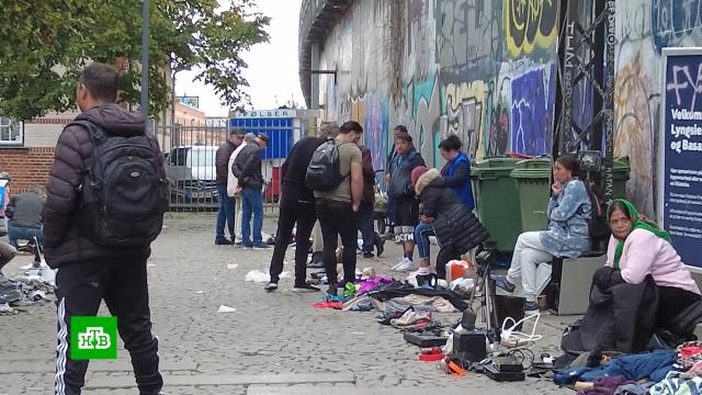 В Дании мигрантов заставят работать для получения пособий.Дания, беженцы, мигранты, работа.НТВ.Ru: новости, видео, программы телеканала НТВ