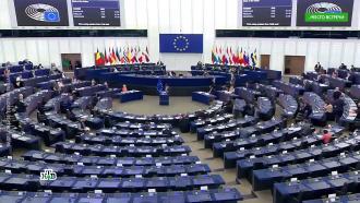 Единоросс назвал евродепутатов-русофобов «помоечными голубями».НТВ.Ru: новости, видео, программы телеканала НТВ
