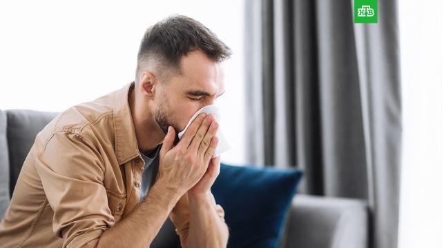 Ученый: болеющие ОРВИ неуязвимы перед COVID-19.В Академии наук объяснили, как сезонные осенние заболевания взаимодействуют с коронавирусной инфекцией.болезни, грипп и ОРВИ, коронавирус, медицина, эпидемия.НТВ.Ru: новости, видео, программы телеканала НТВ
