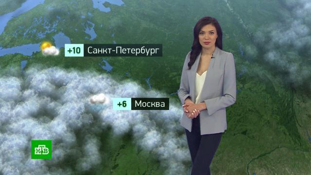 Утренний прогноз погоды на 20сентября.погода, прогноз погоды.НТВ.Ru: новости, видео, программы телеканала НТВ