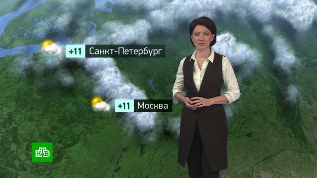 Утренний прогноз погоды на 21сентября.погода, прогноз погоды.НТВ.Ru: новости, видео, программы телеканала НТВ
