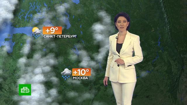 Прогноз погоды на 23сентября.погода, прогноз погоды.НТВ.Ru: новости, видео, программы телеканала НТВ
