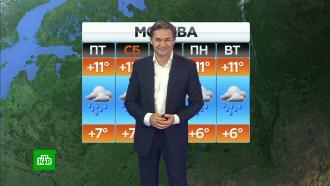 Прогноз погоды на 24сентября.НТВ.Ru: новости, видео, программы телеканала НТВ