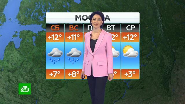 Прогноз погоды на 25сентября.погода, прогноз погоды.НТВ.Ru: новости, видео, программы телеканала НТВ