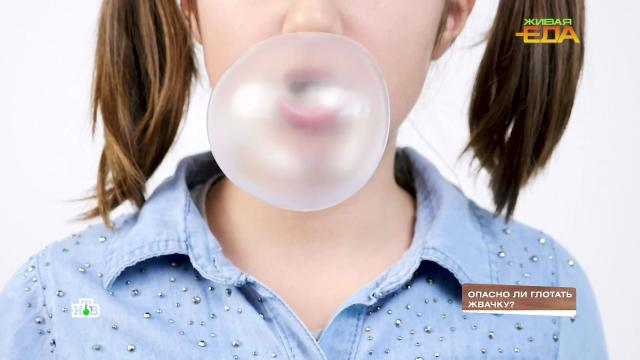 Опасноли глотать жвачку?НТВ.Ru: новости, видео, программы телеканала НТВ