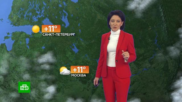 Прогноз погоды на 28сентября.погода, прогноз погоды.НТВ.Ru: новости, видео, программы телеканала НТВ