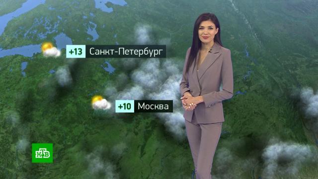 Утренний прогноз погоды на 27 сентября.погода, прогноз погоды.НТВ.Ru: новости, видео, программы телеканала НТВ