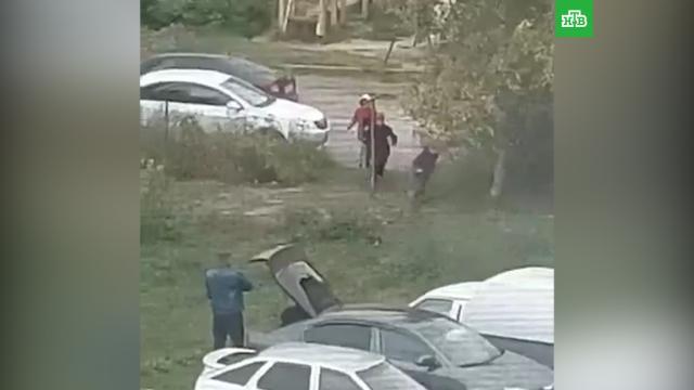 Полиция нашла мужчину, стрелявшего по кошкам удетской площадки.Мордовия, дети и подростки, кошки, полиция, стрельба.НТВ.Ru: новости, видео, программы телеканала НТВ
