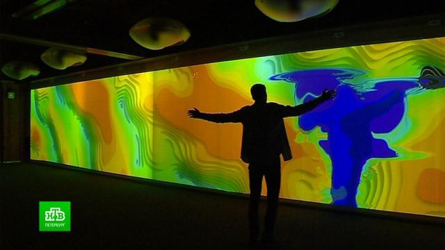 «Цифровые двойники» откроют галерею виртуального искусства в Петербурге