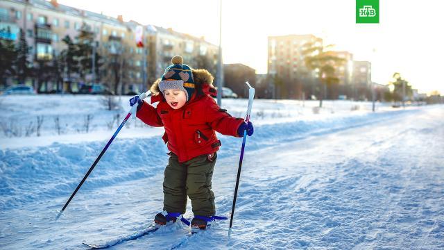 Вильфанд рассказал, какой будет зима в России.зима, погода.НТВ.Ru: новости, видео, программы телеканала НТВ