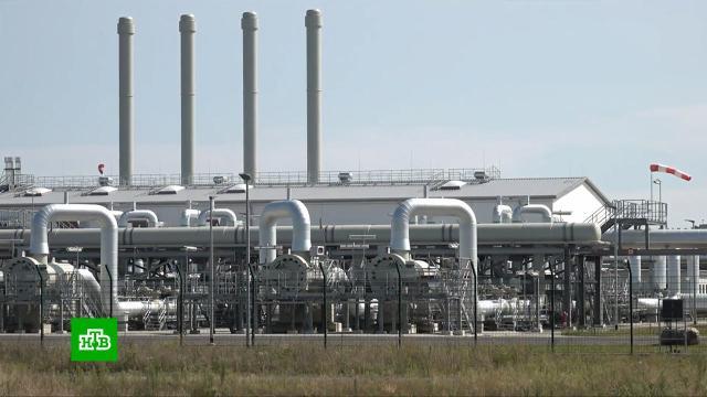 Газовая лихорадка: бизнес требует от Европы долгосрочные контракты сРоссией