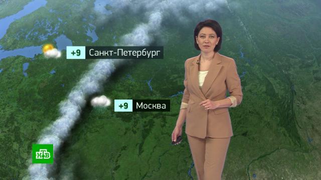Утренний прогноз погоды на 14октября.погода, прогноз погоды.НТВ.Ru: новости, видео, программы телеканала НТВ