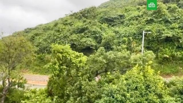 На Гонконг обрушился тайфун: есть жертвы.Гонконг, Китай, погода, погодные аномалии, штормы и ураганы.НТВ.Ru: новости, видео, программы телеканала НТВ