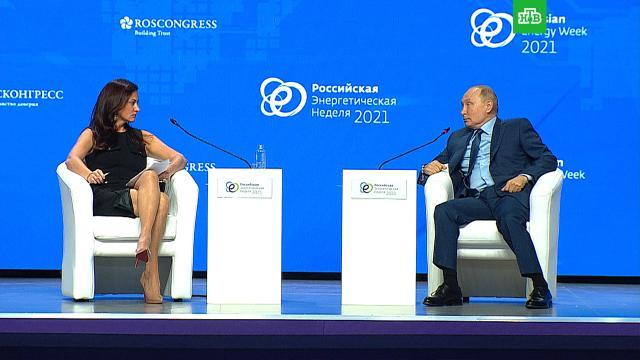 Путин: ненормально, когда преследуют журналистов.Путин, СМИ, журналистика.НТВ.Ru: новости, видео, программы телеканала НТВ