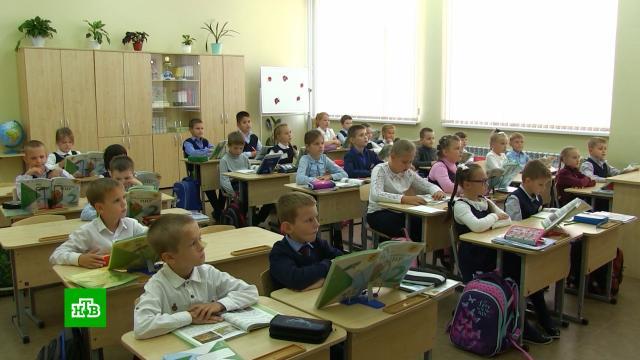 Зачем власти Москвы начинают эксперимент по тестированию на COVID-19 в школах.Москва, болезни, дети и подростки, коронавирус, эпидемия.НТВ.Ru: новости, видео, программы телеканала НТВ