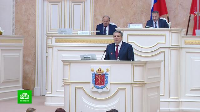 Депутаты утвердили политического вице-губернатора Петербурга и скорректировали бюджет