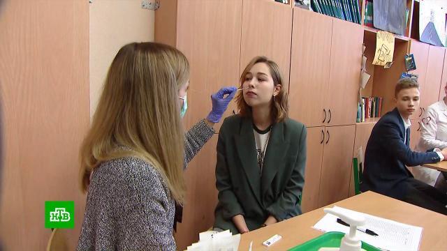 ВМоскве началось тестирование школьников на COVID-19.болезни, дети и подростки, здоровье, коронавирус, школы, эпидемия.НТВ.Ru: новости, видео, программы телеканала НТВ