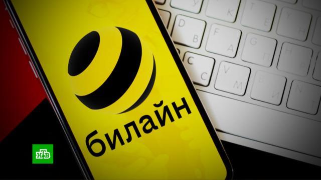 Новые слоган илоготип: «Билайн» провел первый за 16лет ребрендинг.Билайн, компании, экономика и бизнес.НТВ.Ru: новости, видео, программы телеканала НТВ