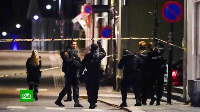Устроивший бойню вНорвегии лучник исповедовал радикальный ислам.Норвегия, убийства и покушения.НТВ.Ru: новости, видео, программы телеканала НТВ