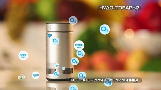 Озонатор для холодильника исредство против коррозии.технологии.НТВ.Ru: новости, видео, программы телеканала НТВ