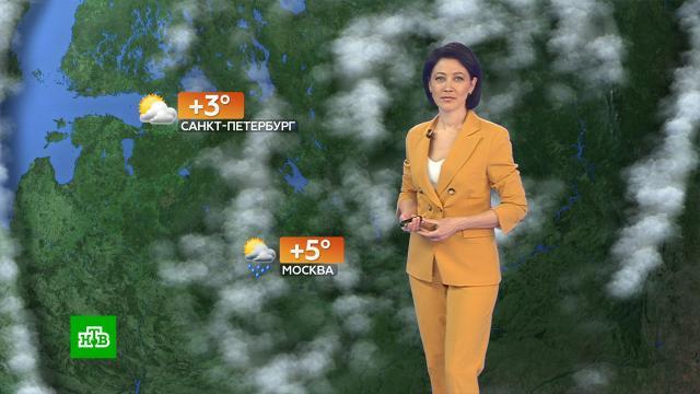 Прогноз погоды на 19октября.погода, прогноз погоды.НТВ.Ru: новости, видео, программы телеканала НТВ