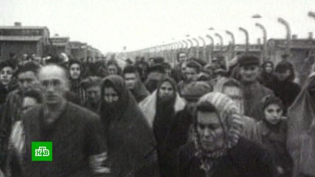 Учителя вСША шокированы требованием преподавать «альтернативный взгляд на холокост»