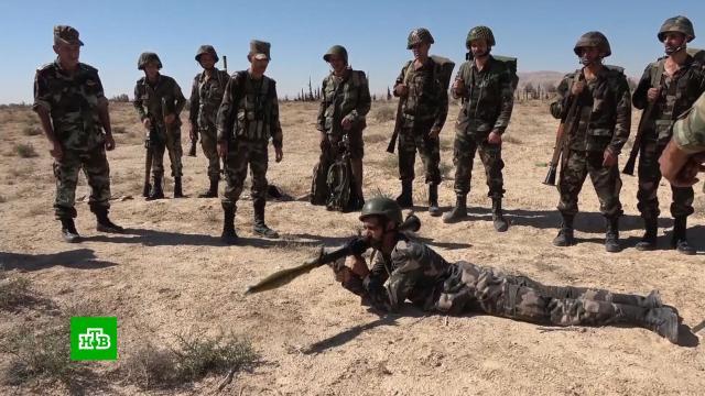 ВСирии прошли масштабные армейские учения.Сирия, учения.НТВ.Ru: новости, видео, программы телеканала НТВ
